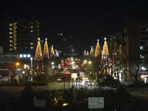 一橋大学を中心とした国立駅前の「大学通り」。駅からまっすぐ伸びる道がロマンチックです。