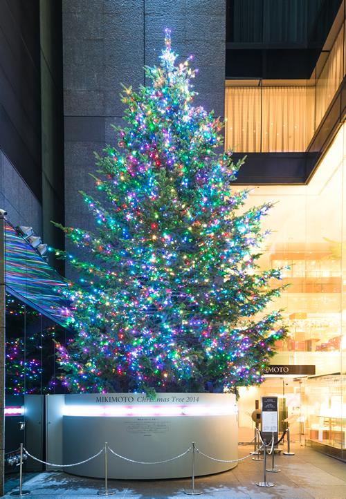 銀座通りの冬の風物詩も今年で最後!高さ10m、LED約6,500個が輝く「ミキモト ジャンボクリスマスツリー」
