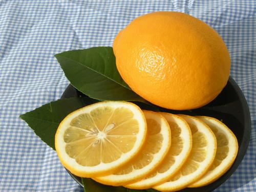 果肉の酸味が穏やかで果皮に独特な良い香りがあるのが特徴