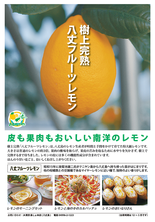 大きさ3倍の「八丈フルーツレモン」がデビュー!八丈島の新ブランドとして12/下から販売開始