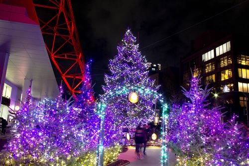 総数60,000個のイルミがお出迎え!2014年の東京タワーイルミネーション