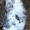 東京都で唯一「日本の滝百選」にも選ばれている檜原村の「払沢の滝」