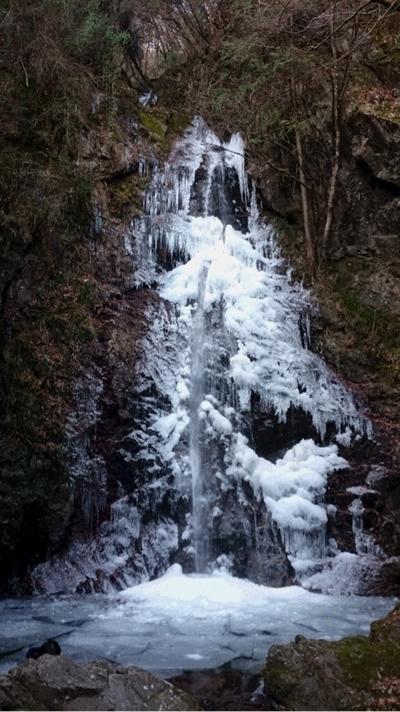 午前8時、気温-3度。檜原村払沢の滝結氷率40%