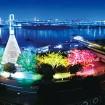 お台場・東京湾の夜景とレインボーブリッジが同時に見られるスポット