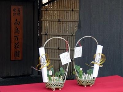 新春を彩る風物詩 向島百花園で「春の七草籠の展示」