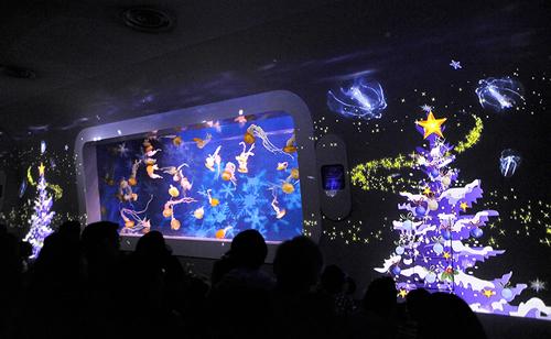 クラゲショー「海月の宇宙」