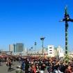 はしごのり演技(江戸消防記念会)