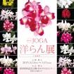 「第69回 JOGA 洋らん展」が立川の国営昭和記念公園で3/13~15(金~日)開催