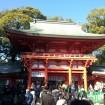今年も良いことがありますように 大宮氷川神社で初詣で県下最高の賑わい