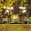 総勢54流派が週替わりで作品展示!目黒雅叙園の「いけばな×百段階段2015」が3月17日(火)から