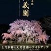 六義園で幻想的な「しだれ桜と大名庭園のライトアップ」を開催 2015年4月5日まで