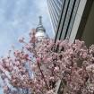 東京スカイツリータウン®の春休みイベント