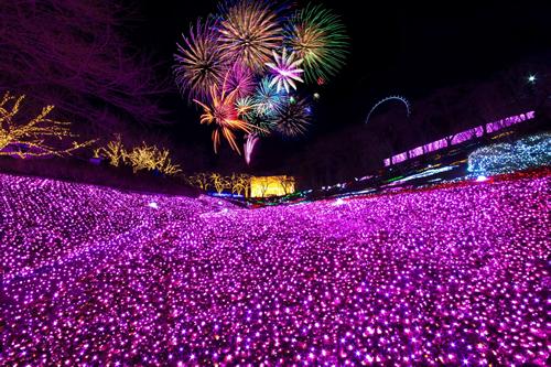 「夜桜花火」は桜色の特製花火は必見。3月21日(土)の19時から山頂エリアにて打ち上げ