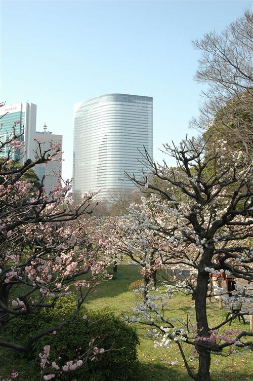昭和27年11月に周囲の水面を含め、国の特別名勝及び特別史跡に指定された
