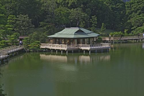 ボラをはじめ、セイゴ、ハゼ、ウナギなどの海水魚が生息する都内で唯一の海水の池「潮入の池」