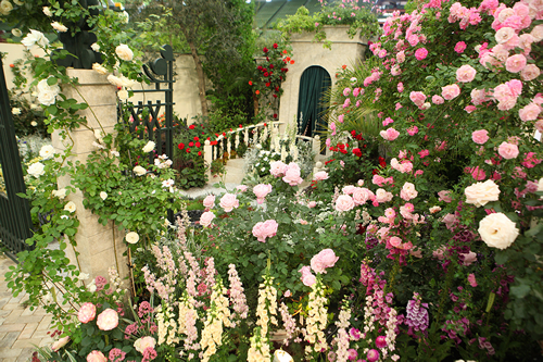 グレースケリーの庭