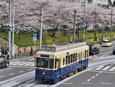 都電さくら号 画像:東京都報道資料