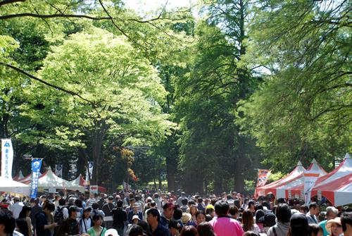 昭和63年からおこなわれている「照姫まつり」 毎年大勢に人で賑わう