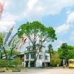 江戸東京たてもの園で「こどもの日イベント」- 親子で楽しめる懐かしの遊びや体験