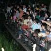 約500匹のケンジボタルが優雅に舞う!「第50回福生ほたる祭」が2015年6月20日(土)開催