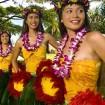 ヴィーナスフォートでGWに「お台場ハワイ・フェスティバル2015」を開催