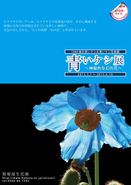 神秘的な幻の花「ヒマラヤの青いケシ展」が箱根湿生花園で5/1~6/10まで開催
