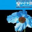 神秘的な幻の花「ヒマラヤの青いケシ展」が箱根湿生花園で2015年5月1日~6月10日まで