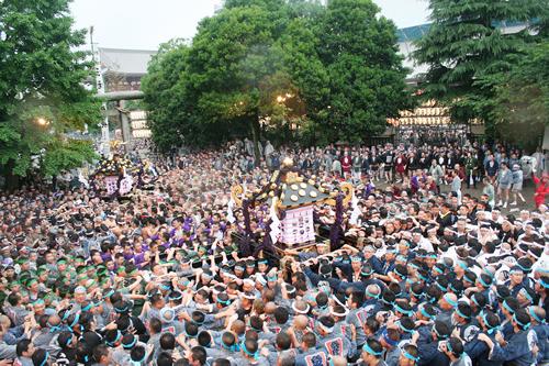 江戸三大祭のひとつ 浅草「三社祭」が2015年5月15日から -  約100基の神輿が集合