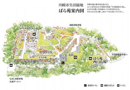 生田緑地ばら苑 苑内マップ