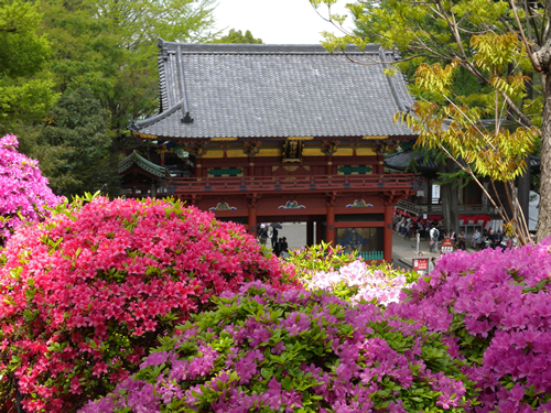 神社境内にある約2,000坪のつつじ苑
