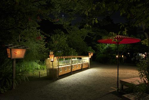 夏の夜の向島百花園