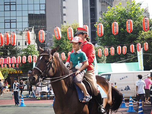 警視庁騎馬隊による乗馬体験