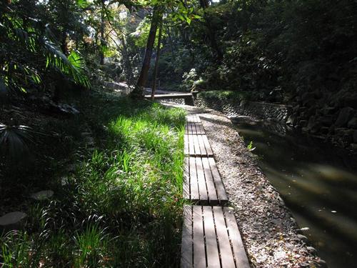 東京23区内に残る唯一の渓谷である世田谷区の「等々力渓谷」