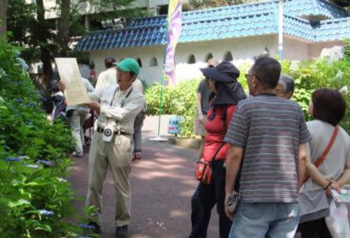 「あじさい園ガイドツアー 」 や「あじさい写真教室 (無料) 」などイベントも盛りだくさん