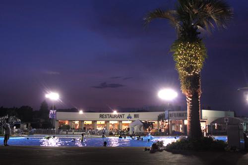 「夜プール ビアガーデン」 毎年大好評のビアガーデンが今年もオープン。 プールやヤシの木などのライトアップや心地のよい音楽などが楽しめる。