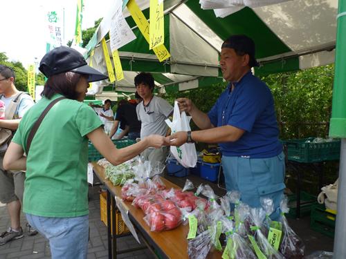 朝採れ新鮮!!江戸川区産の夏野菜の即売