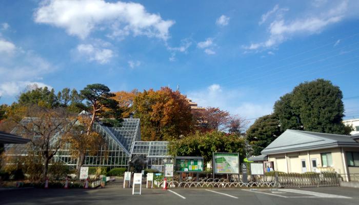 東京都薬用植物園で7月8日(水)に薬草教室「徳川吉宗と薬草」(当日受付先着100名)