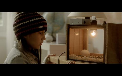 「しあわせなアヒルの子」 © Ring Prod / Les Films d'Antoine アヒルのヒナを育てようとする車イスの少女、マルゴーの挑戦の物語。