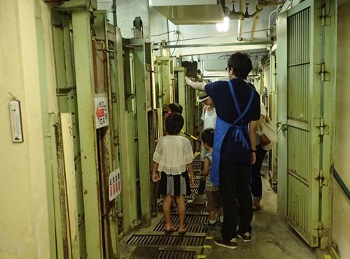 かつてゴリラやチンパンジー、オランウータンを飼育していた動物舎のようすを、東京動物園ボランティアーズスタッフが案内
