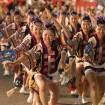 1万人以上の踊り手が参加!「第59回 東京高円寺阿波おどり」 が2015年8月29日(土)、30日(日)に開催