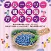 埼玉県美里町で「ブルーベリー摘み取り」のベストシーズンが始まる!収穫は9月上旬まで
