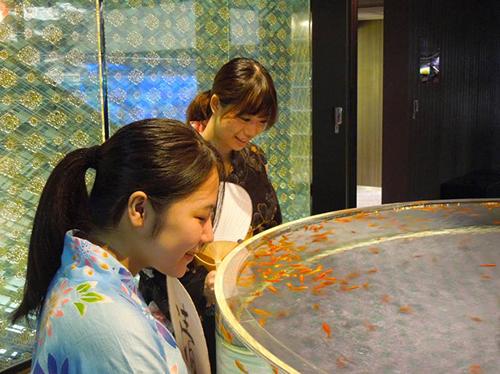 浴衣を着て「ペンギン花火」や江戸リウムの金魚を観賞するイベント「ゆかたで花火」イメージ