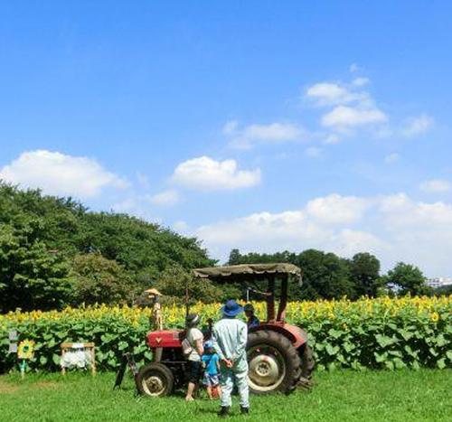 青い空と農場、トラクターが北海道らしい雰囲気