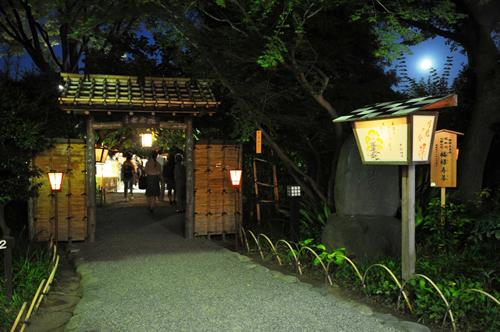 行灯やぼんぼりに照らされた幻想的な夜の庭園を演出 絵行灯灯る庭門