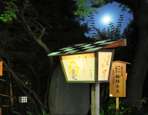 深まりゆく秋の夜に月を観賞しながら、風情を楽しむことができる