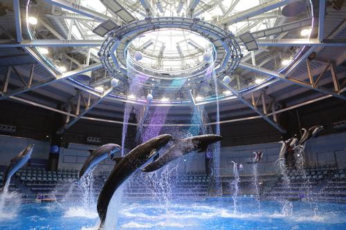 「エプソン アクアパーク品川」が都市型エンターテインメント施設としてリニューアルオープン!
