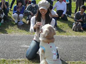 「わんわん運動会in2015」が10月25日(日)に町田市の小山内裏公園で開催