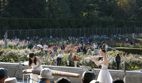 ばら園コンサート(昨年の様子)