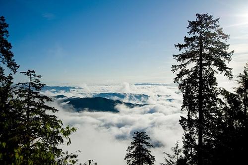 秩父・三峯神社で絶景の雲海鑑賞を