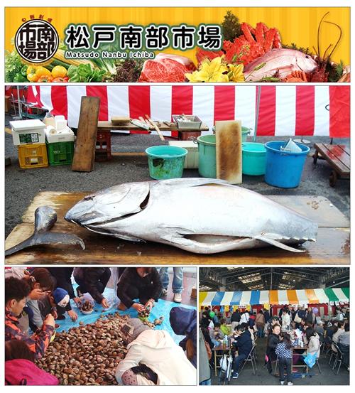マグロの解体ショーや貝の盛り放題販売も!「松戸市南部市場祭2015」が11月1日(日)に開催